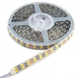 TIRA LED SMD 5050 DOBLE  BLC FRIO 6500  28.8 W 120 LD X ML  IP65 24V